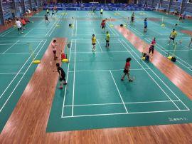 專業體育運動地板 健身房籃球場羽毛球館專用 工廠價格