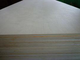 桦木贴面多层胶合板