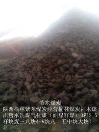 煤炭陕西榆林千树塔煤煤炭水洗面煤块煤籽煤