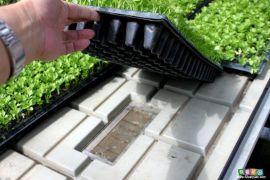 供应智能温室潮汐苗床+移动苗床+移动喷灌系统