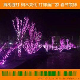 专业做圣诞装饰圣诞树、春节彩灯串灯亮化布置