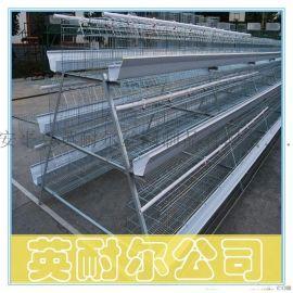 英耐尔供应各种规格蛋鸡笼、肉鸡笼、小鸡笼