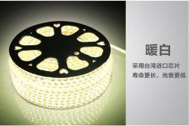 高压灯条 LED灯条 LED LED高压灯条 LED高压灯条220V5050正白
