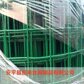 PVC包塑荷蘭網,養殖電焊荷蘭網,圍欄荷蘭網