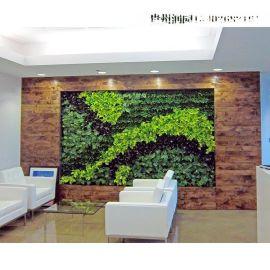 织金立体植物墙施工、立体绿化、仿真园林设计工程【绿植软装公司】