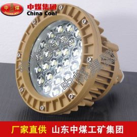 LED防护灯 LED防护灯热销 LED防护灯供应