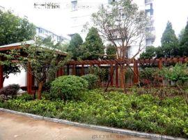息烽屋顶绿化和修文屋顶花园即将开工