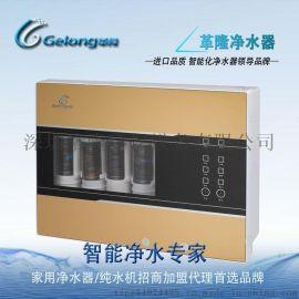 净水器十大品牌排名革隆RO反渗透加热一体净水机