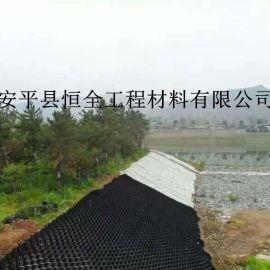 厂家直销三维焊接土工格室河道治理HDPE边坡绿化土工格室