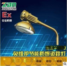 SBR1120-系列免维护节能防爆道路灯