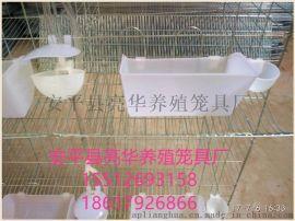 安平亮华养殖笼具厂现货批发白鸽笼 3层12位加密鸽子笼