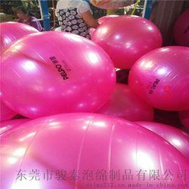 全球爆款65CM加厚防爆瑜伽球 配送打气筒