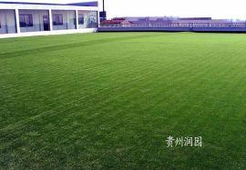 织金仿真草坪仿真草皮批发厂家承包仿真植物草坪施工工程