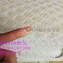 白色塑料漏粪网 养殖网厂家供应 可用做脚垫网
