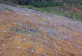 护坡绿化铁丝网,镀锌丝钩编网