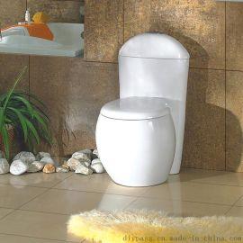 鼎派衛浴DIYPASS  BT-5012 陶瓷連體坐便器