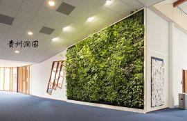 息烽垂直植物墙屏风墙体施工,壁挂花盆安装价格