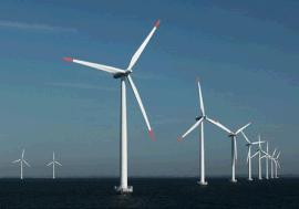 供应风电钢Q345D开平板/卷