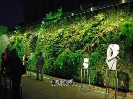 六盘水生态植物墙、仿真园林、仿真绿墙等专业设计