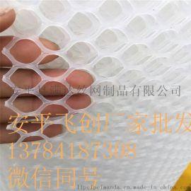 安平塑料网厂家批发 养殖网 脚垫网