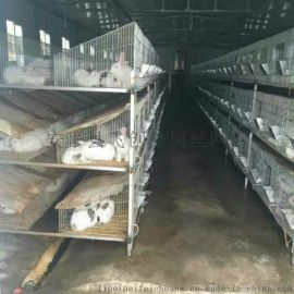 兔子笼厂家找飞创批发子母兔笼 商品兔笼 三层兔子笼