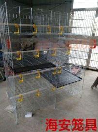雏鸡笼价格育雏笼的位置决定着雏鸡质量的好坏