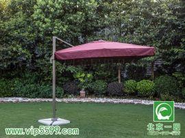 北京一园批发户外遮阳伞