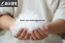 安徽羽毛羽绒厂长期大量厂价直销优质白鹅白鸭羽绒、毛片 同等质量的价格低于同行