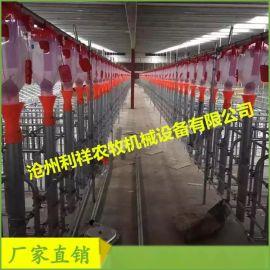 一套自动化料线猪用定位栏料线多少钱预计猪场饲喂系统成本