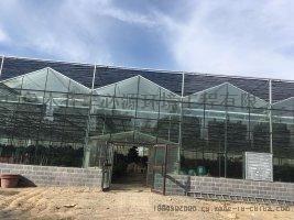 新型温室大棚设计