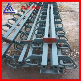 GQF-F40 60型桥梁伸缩缝,毛勒伸缩缝