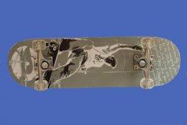 滑板(5)