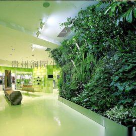 六盘水安顺室内外墙上植物立体种植技术讲解