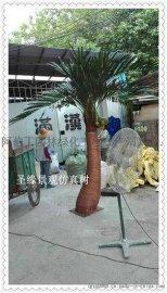 仿真椰子树报价_仿真椰子树 价格_室内仿真椰子树价格