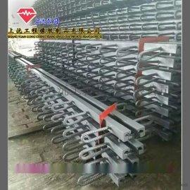 广东c40桥梁伸缩缝 15930833735