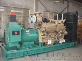 20-500千瓦燃气发电机组