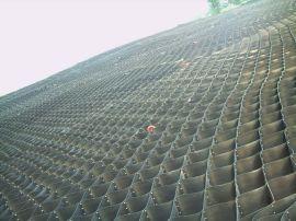 土工格室蜂巢土工格室厂家