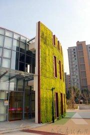 苏州泰格垂直绿化抗紫外线10年植物墙