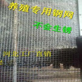 鸡鸭鹅钢丝漏粪网@钢丝漏粪网厂@鸡鸭鹅钢网生产厂家