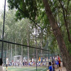 球场围网生产厂家、篮球场地围栏网厂家