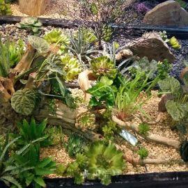 贵阳室外生态园林设计施工工程承包、贵州壁挂花盆批发