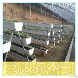 农业新型草莓立体种植槽 草莓基质栽培槽批发