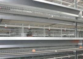 鸡笼厂家/蛋鸡笼 优质蛋鸡笼价格/安平兆东鸡笼厂长期供应