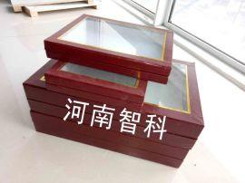 生活史標本盒 標本盒漆布 標本盒大全.jpg