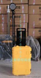 箱式充电移动照明系统TY-136-40w型