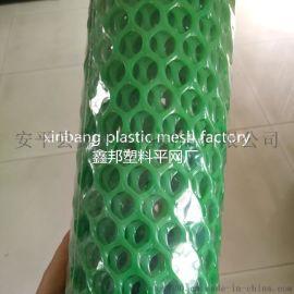 聚乙烯塑料网 塑料平网 养殖网