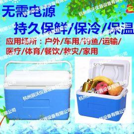 便攜式家用盒飯/米飯/饅頭/包子送餐保溫箱9L,小型迷你手提式母乳冷藏保鮮箱