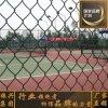 操場護欄網 球場圍欄 球場護欄 體育場圍網 足球場籃球場圍網