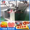 泰努150型软糖生产设备,上海糖果机厂家,软糖加工设备