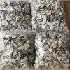 东莞沸石粉厂 沸石颗粒 绿沸石